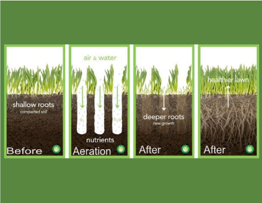 core aeration service in Burlington Greater Toronto Area