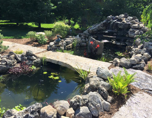 Backyard Pond Contractor in Hamilton