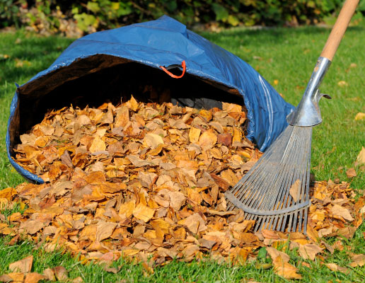 Spring & Fall Cleanup Services